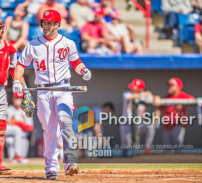 8 March 2013: Washington Nationals outfielder Bryce Harper in action during a Spring Training game against the St. Louis Cardinals at Space Coast Stadium in Viera, Florida. The Cardinals defeated the Nationals 16-10 in Grapefruit League play. Mandatory Credit: Ed Wolfstein Photo *** RAW (NEF) Image File Available ***