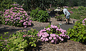 20/06/16<br />