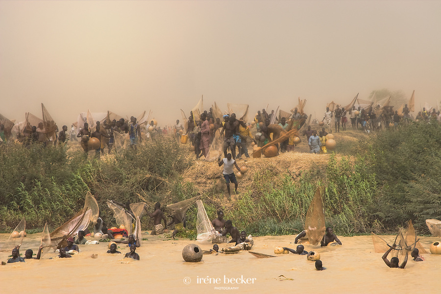The competitors charge towards the river. A scene from the 2009 Argungu Fishing Festival