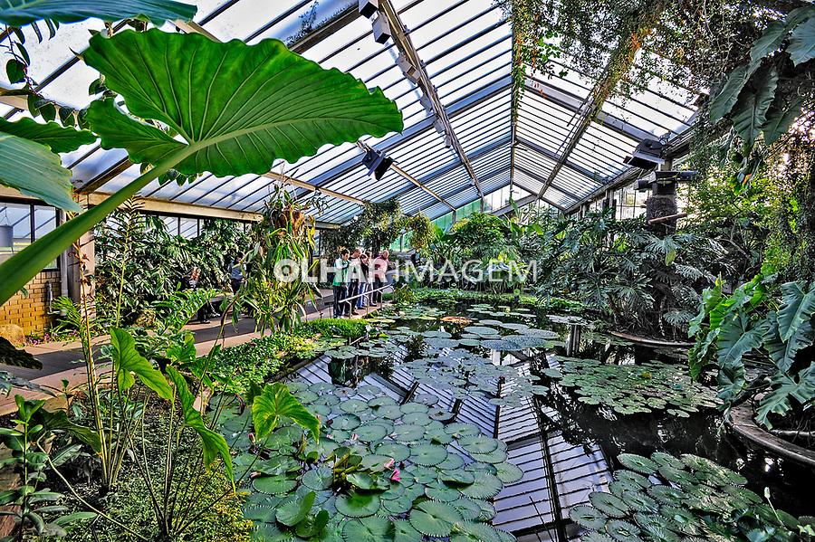 Parque Jardim Botânico Kew Gardens. Londres. Inglaterra. 2008. Foto de Juca Martins.