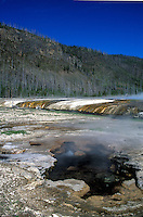 Iron Creek flows through Black Sand Basin  in Yellowstone National Park.