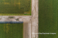 63801-10804 Corn field after it's been cut for silage-aerial Marion Co. IL