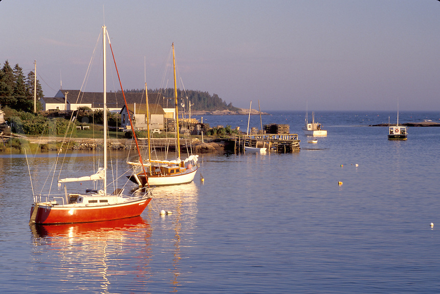 Maine, Corea, ME, Boats buoyed in the harbor of Corea.