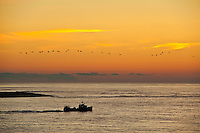 Commercial fishing boat, Chatham, Cape Cod, MA, USA