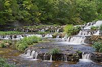 The Falling Water River drops 20' over Burgess Falls cascades.
