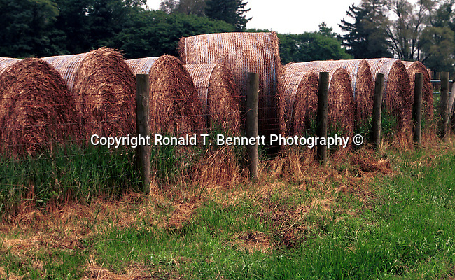 Hay rolls Maryland, Hay bails Maryland, Old Line State, Free State, Fine Art Photography by Ron Bennett, Fine Art, Fine Art photography, Art Photography, Copyright RonBennettPhotography.com ©