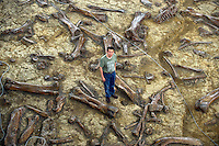 Professor Xu Xing poses at the site of dinosaur fossil in tyrannosaurus exhibition hall in Zhecheng, Shandong province, China. <br /> <br /> photo by Lou Lin Wei / Sinopix