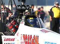 May 30, 2014; Englishtown, NJ, USA; NHRA top fuel driver Morgan Lucas during qualifying for the Summernationals at Raceway Park. Mandatory Credit: Mark J. Rebilas-