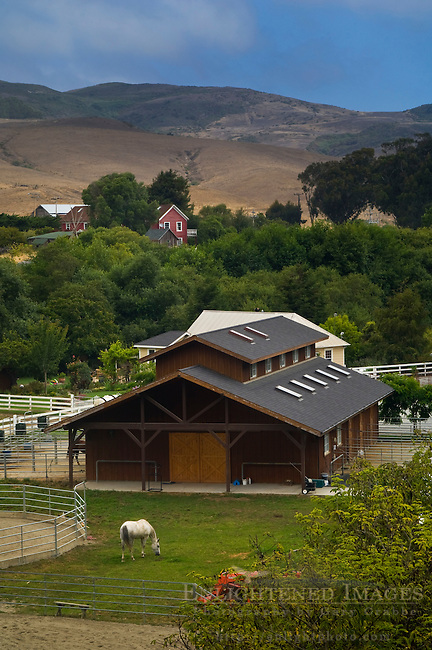 Horse farm and hills at San Gregorio, San Mateo County, California