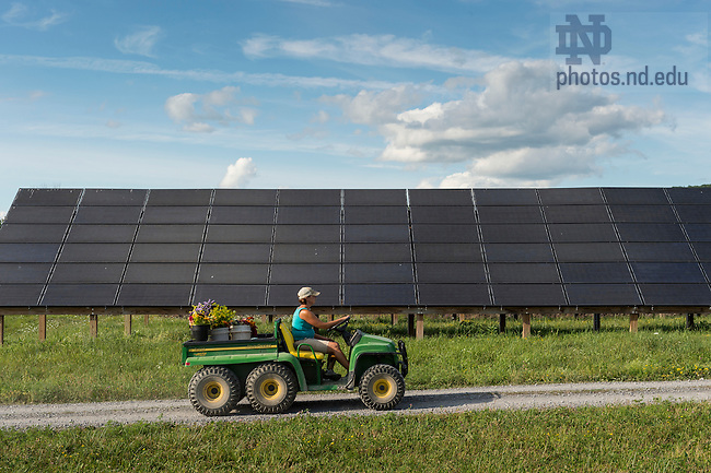 Aug. 7, 2015; Nursery manager Lisa Dean passes solar panels as she brings freshly picked flowers back to the nursery at Schoharie Valley Farms in Schoharie, New York.  (Photo by Barbara Johnston/University of Notre Dame)