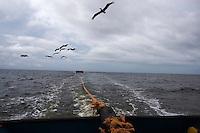 Cargo Crew. Nicaragua