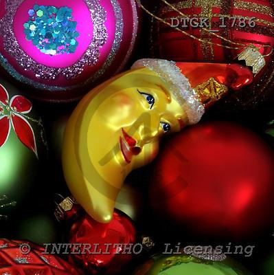 Gisela, CHRISTMAS SYMBOLS, photos, DTGK1786,#XX# Blumen, flores, retrato
