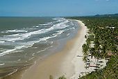Bahia State, Brazil. Southern Bahia, Serra Grande beach (Praia da Pe, Pe de Serra Grande). Sunny sandy beach lined with palm trees. Between Ilheus and Itacare.
