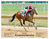 Privatemarketvalue winning at Delaware Park on 7/16/12