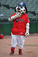"Peoria Chiefs mascot ""Homer"" in action prior to the game against the Quad Cities River Bandits at Dozer Park on June 11, 2018 in Peoria, Illinois. The Chiefs won 1-0.  (Dennis Hubbard/Four Seam Images)"
