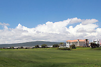 Ronaldiño, Gallos Blancos