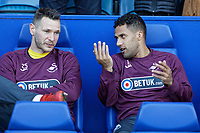 (L-R) Erwin Mulder and Wayne Routledge of Swansea City sit on the bench during the Sky Bet Championship match between Sheffield Wednesday and Swansea City at Hillsborough Stadium, Sheffield, England, UK. Saturday 23 February 2019