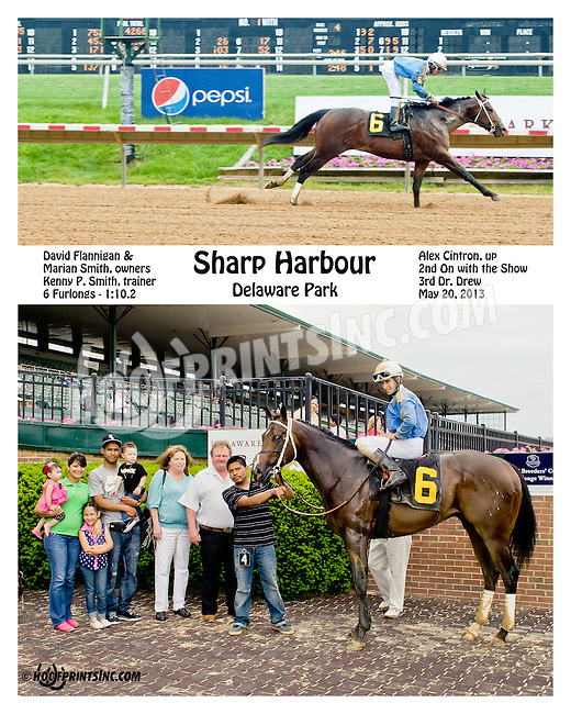 Sharp Harbour winning at Delaware Park on 5/20/13 .