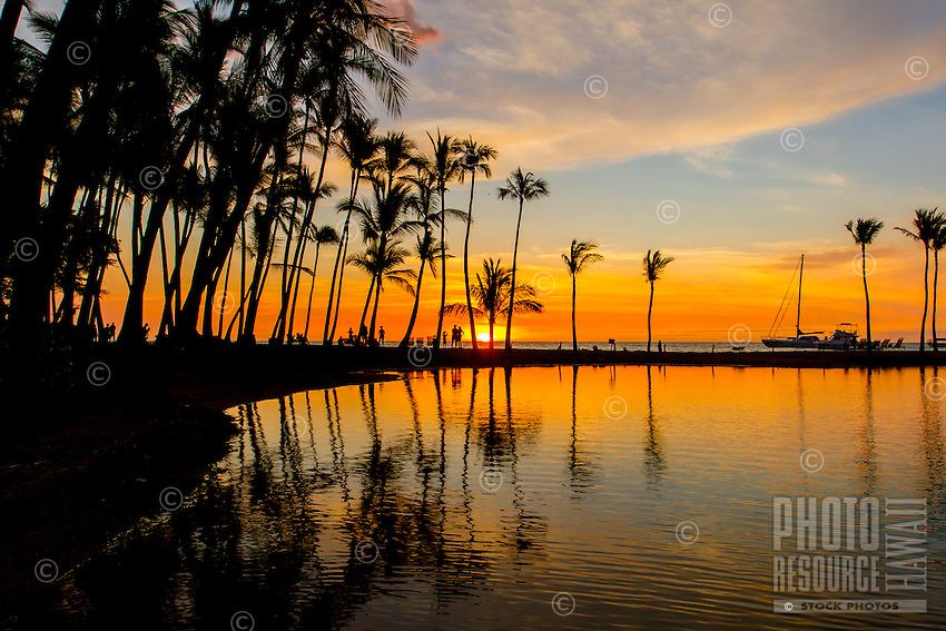 A colorful sunset with a line of silhouetted palm trees at 'Anaeho'omalu Bay and Waikoloa Beach, Big Island.