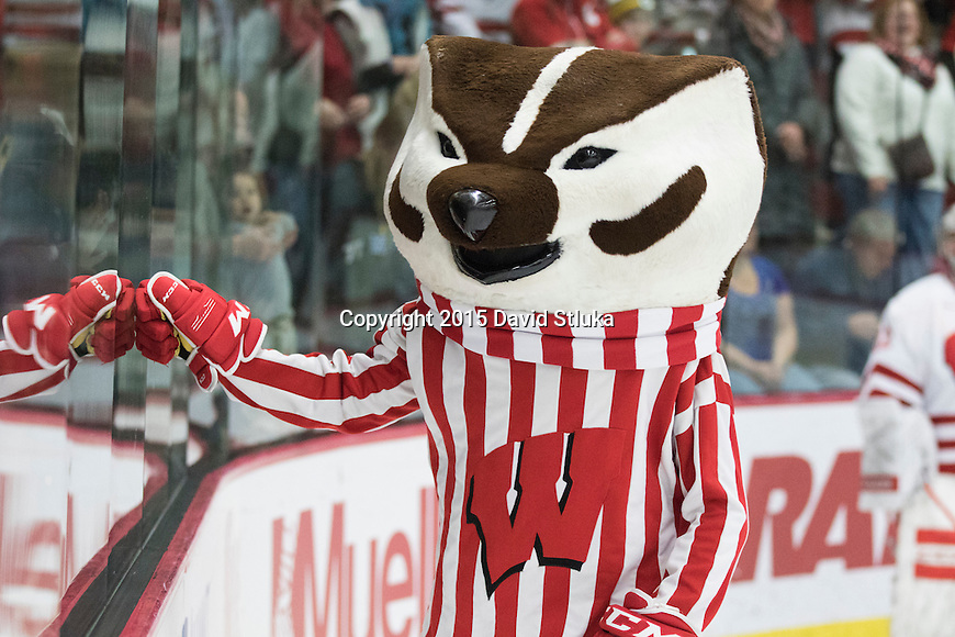 Wisconsin Badgers mascot Bucky Badger during an NCAA women's hockey game against the Minnesota Golden Gophers Friday, December 4, 2015, in Madison, Wis. The Badgers won in overtime 3-2. (Photo by David Stluka)
