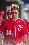 6 September 2014: Washington Nationals outfielder Bryce Harper in the dugout during a game against the Philadelphia Phillies at Nationals Park in Washington, DC. The Nationals fell to the Phillies 3-1 in the second game of their 3-game series. Mandatory Credit: Ed Wolfstein Photo *** RAW (NEF) Image File Available ***