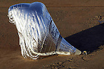 The balloon of adventurer Steve Fossett lies on the ground after crash landing in the Australian Outback after he completed his solo circumnavigation of the World.