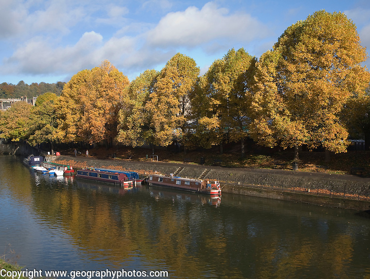 Narrow boats moored on the River Avon, Bath, Somerset, England