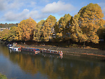 Narrow boats moored on the River Avon, Bath, Somerset, England