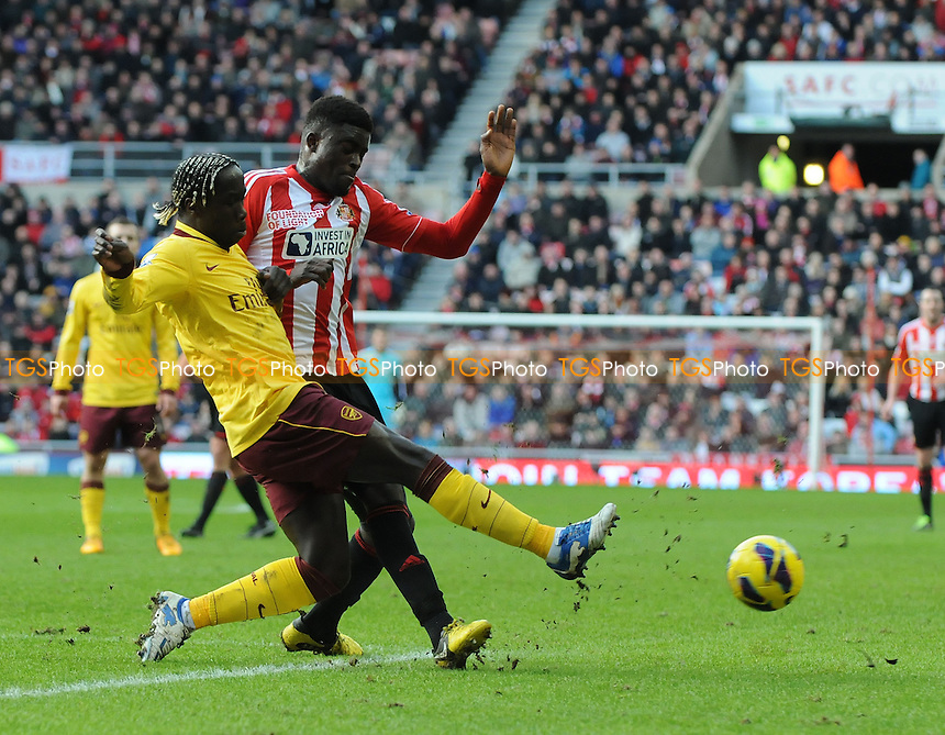 Arsenal's Bacary Sagna battles with Alfred N'Diaye of Sunderland - Sunderland vs Arsenal - Barclays Premier League Football at The Stadium of Light, Sunderland, Tyne & Wear - 09/02/13 - MANDATORY CREDIT: Steven White/TGSPHOTO - Self billing applies where appropriate - 0845 094 6026 - contact@tgsphoto.co.uk - NO UNPAID USE.