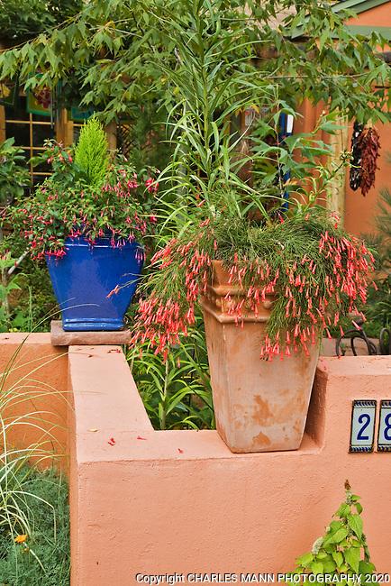 An urn decorates the external wall of Dan Johnson's Denver garden.