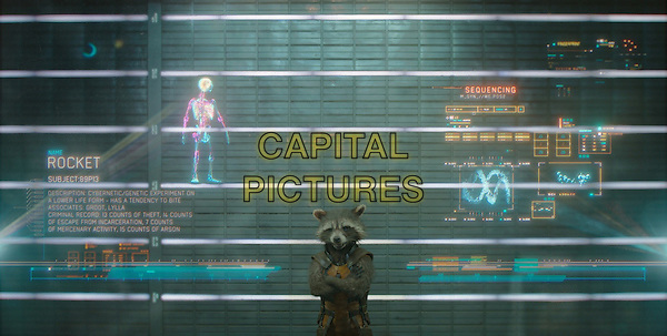 Rocket Raccoon (voiced by Bradley Cooper)<br /> in Guardians of the Galaxy (2014) <br /> *Filmstill - Editorial Use Only*<br /> CAP/FB<br /> Image supplied by Capital Pictures