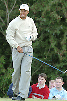 THOMASTOWN, IRELAND. Tiger Woods face shows the pain after his drive on the 5th during the American Express Championship day two at the Mount Juliet Golf Club on October 1th, 2004 in Thomastown, Ireland ..Photo AFP/NEWSFILE/FRAN CAFFREY..(Photo credit should read FRAN CAFFREY/NEWSFILE/AFP)...This Picture has been sent you under the condtions enclosed by:.Newsfile Ltd..the Studio,.Millmount Abbey,.Drogheda,.Co Meath..Ireland..Tel: +353(0)41-9871240.Fax: +353(0)41-9871260.GSM: +353(0)86-2500958.email: pictures@newsfile.ie.www.newsfile.ie.FTP: 193.120.102.198..This picture is from Fran Caffrey@newsfile.ie