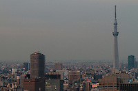 Sky tree above Tokyo, Japan. Friday February 5th 2016