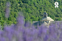 Senanque Abbey and lavender field (Licence this image exclusively with Getty: http://www.gettyimages.com/detail/94466888 )
