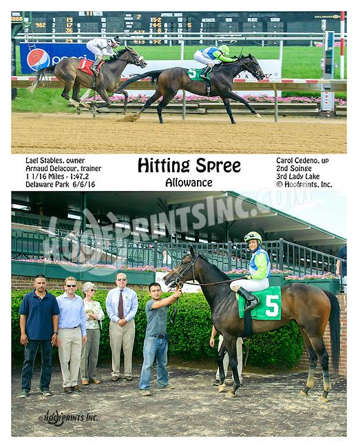 Hitting Spree winning at Delaware Park on 6/6/16