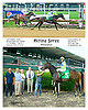 Hitting Spree winning at Delaware Park on 6/6/16