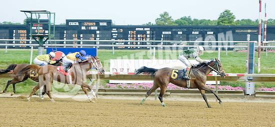 Explosive Heat MVF winning at Delaware Park on 7/11/12