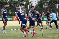 SÃO PAULO, SP, 11.11.2015- FUTEBOL-PALMEIRAS - O jogadores durante treino na Academia de Futebol do Palmeiras na Barra Funda, região oeste de São Paulo na tarde desta quarta-feira, 11.  (Foto: Renato Mendes / Brazil Photo Press)