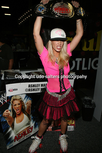 Ashley Massaro Attends EXXXOTICA 2013 New York/New Jersey Held at the Raritan Center in Edison NJ