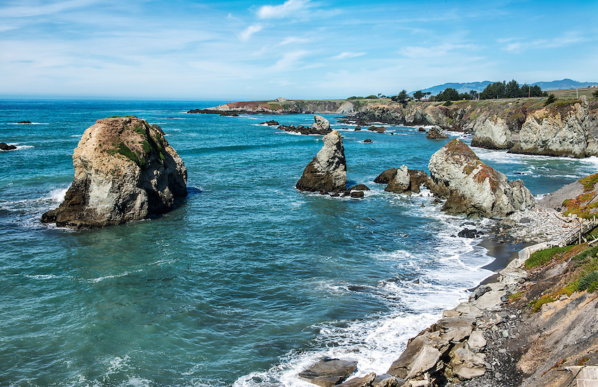 A section of the California coast in Sonoma County, off Highway 1 just north of Bodega Bay.