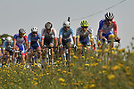 The peloton in action during the 113th edition of Paris-Tours 2019, running 217km from Chartres to Tours, France. 13th October 2019.<br /> Picture: ASO/Bruno Bade | Cyclefile<br /> All photos usage must carry mandatory copyright credit (© Cyclefile | ASO/Bruno Bade)