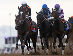 DEL MAR, CA - NOVEMBER 03: The pack of the Longines Breeders\'92 Cup Distaff led by Paradise Woods #7, ridden by Flavien Prat,on Day 1 of the 2017 Breeders' Cup World Championships at Del Mar Thoroughbred Club on November 3, 2017 in Del Mar, California. (Photo by Alex Evers/Eclipse Sportswire/Breeders Cup)
