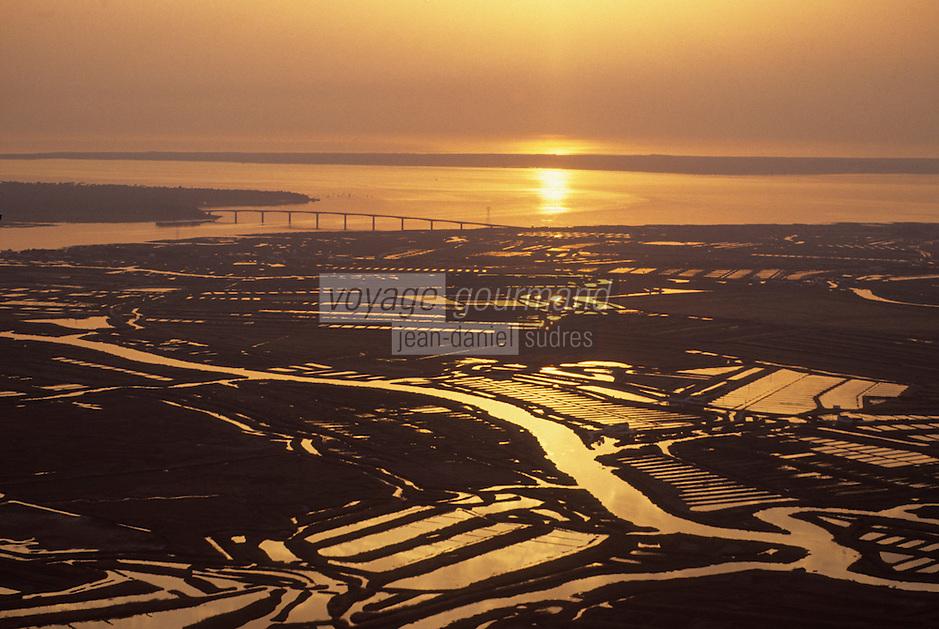 Europe/France/Poitou-Charentes/17/Charente-Maritime/Estuaire de la Seudre: Estuaire et parc à huitres - à l'arrière plan, le pont de l'Ile d'Oléron Vue aérienne