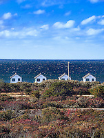 Beach cottages, Truro, Cape Cod, MA, USA