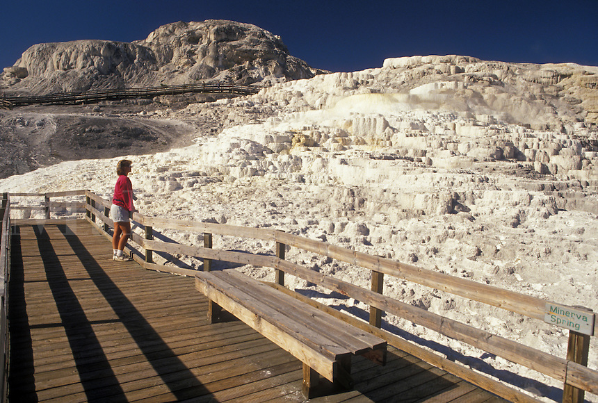 Yellowstone National Park, Mammoth Hot Springs, WY, Wyoming, Woman standing on boardwalk looking at Minerva Spring at Mammoth Hot Springs in Yellowstone Nat'l Park in Wyoming.