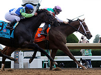 October 06, 2018 : Golden Mischief, ridden by Florent Geroux, wins the 38th running of the G2 Thoroughbred Club of America at Keeneland on October 6, 2018 in Lexington, Kentucky. OwnerJuddmonte Farms Inc (Khalid Abdullah), Trainer Brad H. Cox. Mary M. Meek/ESW/CSM