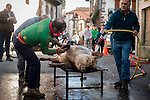 Some men scrape a dead pig's skin in traditional way pig slaughtering.  Doneztebe (Basque Country). December 08. 2016. The slaughter traditionally takes place in the autum and early winter and the work often is done in the open. (Gari Garaialde / Bostok Photo)