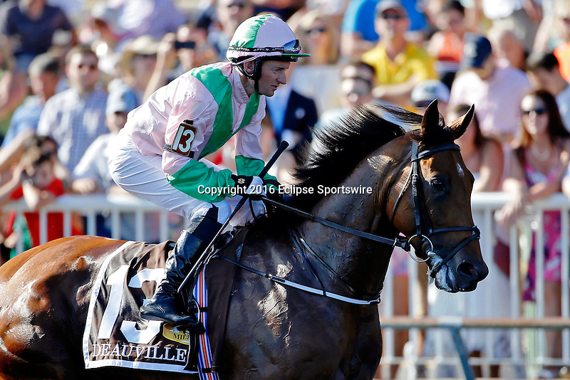 ARLINGTON HEIGHTS, IL - AUGUST 13: Deauville #13, ridden by Seamie Heffernan, during the post parade before Arlington Million at Arlington International Racecourse on August 13, 2016 in Arlington Heights, Illinois. (Photo by Jon Durr/Eclipse Sportswire/Getty Images)