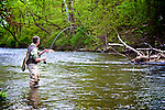 Fly fishing for trout in Vermont streams. 2010.