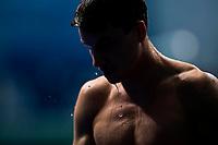 HAUSDING Patrick GER bronze medal<br /> Diving<br /> Men's 1m springboard final<br /> 16/07/2017 <br /> XVII FINA World Championships Aquatics<br /> Duna Arena<br /> Photo @ Giorgio Perottino/Deepbluemedia/Insidefoto